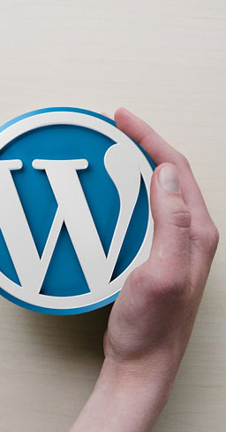 Care of your Wordpress installation